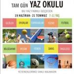 20090527_ydu_yetenek_avcilari_poster