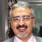 Prof.Dr. Vedat SAĞMANLIGİL