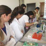 """YDÜ Deneysel Sağlık Bilimleri Araştırma Merkezi (DESAM) Bünyesinde """"Uygulamalı Hücre Kültürü Kursu"""" Gerçekleştirildi"""