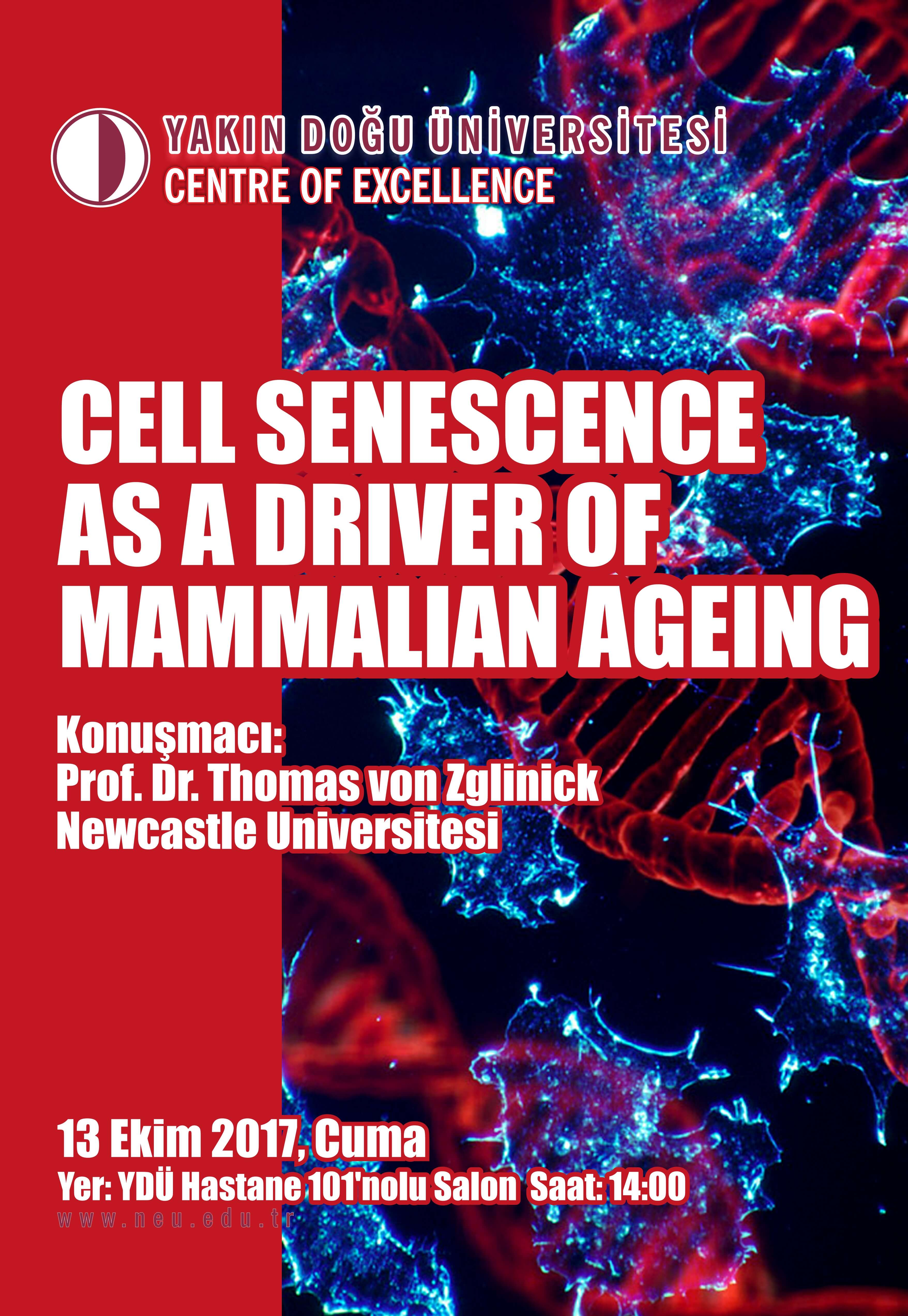 Seminer: Cell Senescence as a Driver of Mammalian Ageing