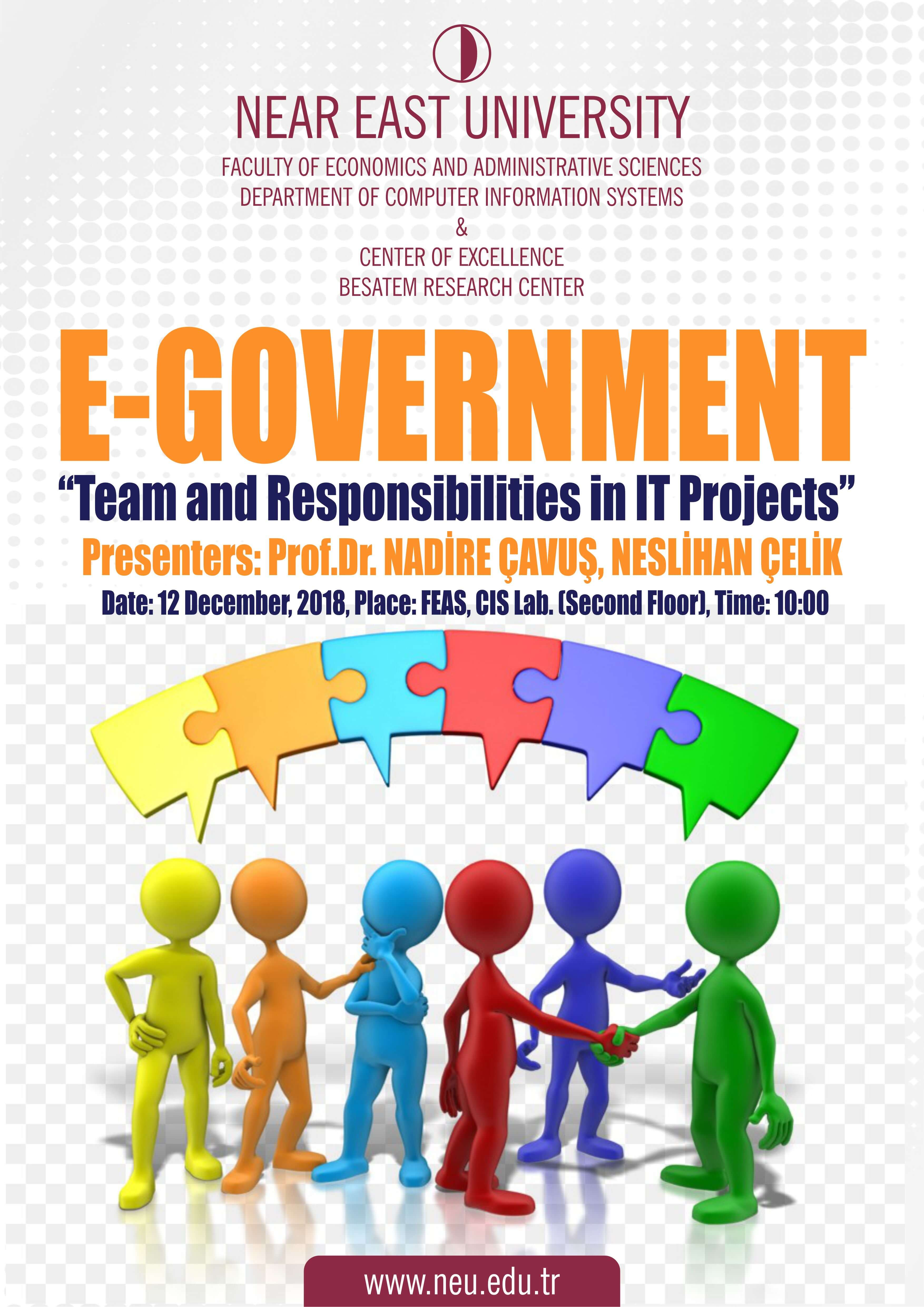 "E-Government ""Team and Responsibilities in it Projects"""